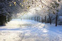 Winter snow scene Dublin Ireland. | Flickr - Photo Sharing!