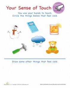 ...   Vocabulary worksheets, Worksheets and Grade 1 math worksheets