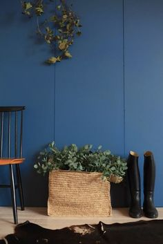Proposed Laundry Cabinetry color - Pitch Blue Farrow and Ball | peinture stiffkey blue farrow and ball
