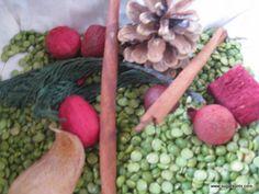 Christmas Sensory Bin from Sugar Aunts