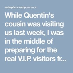While Quentin's cousin was visiting us last week, I was in the middle of preparing for the real V.I.P. visitors from the Cape we were expecting for the weekend. Every single bed in the house would be occupied for the occasion of my half-sister Beatrice's 21st birthday celebration - 12 adults, 2 kids and my…