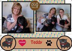 CTPR Alum Teddy #adoptdontshop
