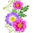 Spring elixir by KmyGraphic