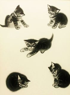 Vintage 1950s Kittens Childrens Print, Clare Turlay Newberry Cat Art