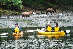Alaska Cruise, Hawaiian Islands, Paddle Boarding, Central America, Snorkeling, Pacific Northwest, Kayaking, Places To See, Safari