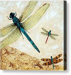 Animals Mixed Media Canvas Prints - Zen Flight - Dragonfly Art By Sharon Cummings Canvas Print by Sharon Cummings