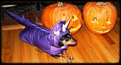 https://flic.kr/p/AuyGGj | Halloween