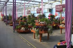 pottery displays for retail | photo of our retail area, showing the benchs filled with pottery and ...