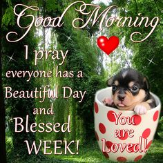Good Morning, Happy Monday, I pray that you have a safe and blessed day!!