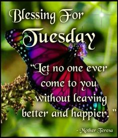 Blessing For Tuesday good morning tuesday tuesday quotes tuesday blessings tuesday pictures tuesday images good morning tuesday blessed tuesday Good Morning Tuesday, Good Morning Picture, Good Morning Friends, Good Morning Good Night, Good Morning Quotes, Sunday, Tuesday Pictures, Tuesday Images, Nice Words About Life