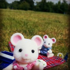 Another brilliant entry from Instagram user candy4cuties #sylvaniansummer #sylvanianfamilies