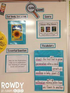 Close Reading display: