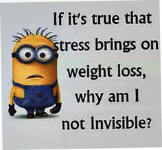 Today 21 Funniest Minions- yeah no kiddin' Funny Minion Memes, Minions Quotes, Funny Jokes, Hilarious, Minion Sayings, Minion Humor, It's Funny, Funny Pins, Funny Sayings
