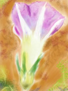 the morning glory #sketchbookpro #expressionism #digital #watercolour #drawing #art