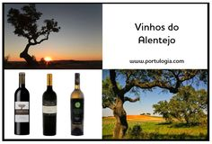 The best portuguese wines from Alentejo in www.portulogia.com. #portulogia #Alentejo #wines #vinho