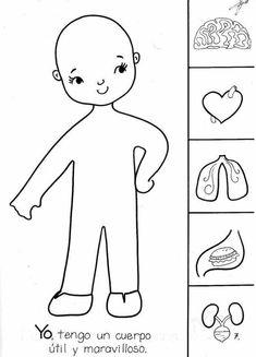 Risultati immagini per actividades para preescolar Human Body Activities, Preschool Activities, Science For Kids, Science And Nature, Body Preschool, Body Systems, My Themes, Preschool Worksheets, Kids Education