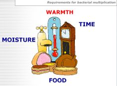 Bacterial Requirements Food Safety Training, I Foods, Bart Simpson