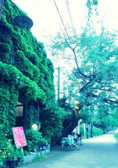 ふかくさ 盛岡中津川沿いのカフェ