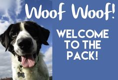 Thanks for signing up! Check your inbox for your free download. in the meantime, check out some of these recent posts: 3 Secrets to Gentle and Humane Dog Training How to Stop Your Dog Barking at Night How to Stop Your Dog From Jumping on People Hope you enjoy! Feel free to comment or share! …