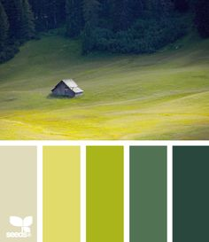 valley greens (love seeing these shades of green side-by-side; shows how well they look together)