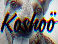 Koshoo by Daniel Hosoya