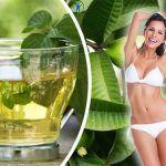Aplana el vientre y reduce esos kilos de mas con esta Bebida termogenica para deshinchar el abdomen. Te enseñamos a hacer un potente remedio natural.
