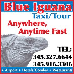 A guide to Cayman transportation, from buses to taxi service, ferries and more!