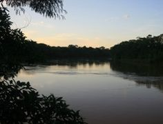 Everything You've Ever Dreamed Of: The Amazon Rainforest in Peru