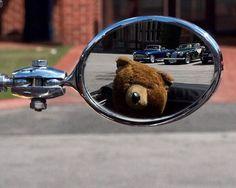 Not your average Teddy Bear. __________ #notmyphoto photo credit: Matt via Flickr #teddybear #rearviewmirror