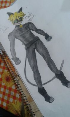 Cat mua.. ladybug miraculus chat noir.. dibujo hecho por mi