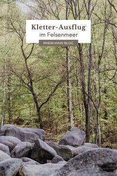 Buch über Frankfurt - Rhein-Main-Blog Maine, Rhein Main Gebiet, Frankfurt, Highlights, Nature Reserve, Wiesbaden, Luminizer, Hair Highlights, Highlight