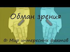 Обман зрения (Оптическая иллюзия)   http://www.ozon.ru/context/detail/id/136250265/         http://www.ozon.ru/context/detail/id/136250280/         https://www.amazon.com/x421-x442-x438-x445-Russian-ebook/dp/B01EVDZDBC?ie=UTF8 https://www.amazon.com/x421-x442-x438-x445-x434-ebook/dp/B01EVDZBFU?ie=UTF8 http://www.litres.ru/evgeniy-kislov/         https://ridero.ru/books/stikhi_dlya_detei_i_ikh_roditelei-1/   https://ridero.ru/books/stikhi_dlya_detei_i_ikh_roditelei-2/