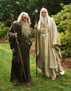 Gandalf the Grey and Saruman.