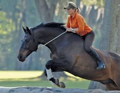 Linda Parelli and her horse Remmer.   Linda is a gifted horse trainer, clinician, and co-founder of the #1 horse program in the world, Parelli Natural Horsemanship.