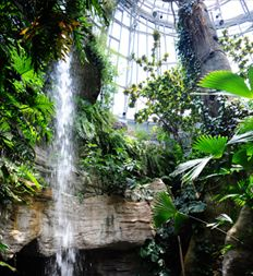 Houston Museum of Natural Science - butterfly exhibit - my beautiful granddaughter's favorite spot! The butterflies love her!