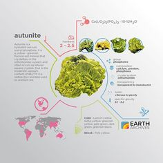 Autunite was discovered in 1852 near its namesake, Autun, France. #science #nature #geology #minerals #rocks #infographic #earth #autunite