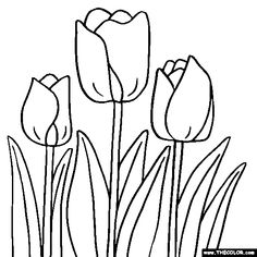 Free Flowers Coloring Pages Color In This Picture Of A Tulip Flower And Others With Our Library Online