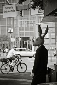 Bunny head on suited body ready for the city Absolutely understanding the spot that the