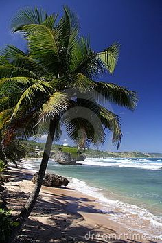 Beautiful Caribbean beach - Barbados #Caribbean #Barbados