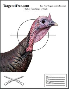 photograph about Printable Animal Targets called 16 Suitable Absolutely free Printable Wanting Aims pics within just 2019