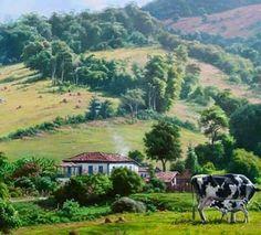 antigas fazendas casas coisas simples fazenda