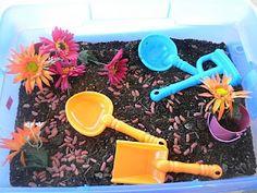 Seeds, Flowers and Plants sensory table