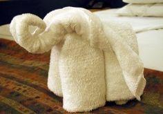 Towel Elephant-site has other towel folding ideas too.
