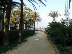 """""""Marbella Club Hotel"""" trail in Marbella ( Spain) (Tuesday 16-04-2013 19:31 pm SAMSUNG DUOS Fbb) by http://www.skindefenders.com team"""