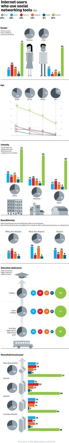 Social Media 2013 User Demographics – infographic /@BerriePelser