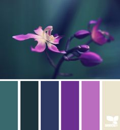 A high Excellence value would love this excitingly handsome palette. | flora hues via Design-Seeds | commentary via The Voice Bureau at AbbyKerr.com