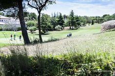 Villa Marigolf - golf Bonmont Villa, Vineyard, Golf Courses, Outdoor, Spain, Earth, Outdoors, Vine Yard, Vineyard Vines
