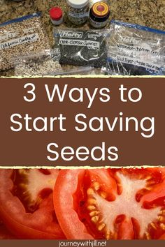 If you're looking to start saving seeds, these tips will help you know which seeds you can save and how to get started. You can easily save seeds from your favorite vegetables like tomatoes and pepper Gardening For Beginners, Gardening Tips, Growing Tomatoes In Containers, Grow Tomatoes, Tomato Seeds, Tomato Seedlings, Tomato Garden, Herbs Garden, Growing Flowers