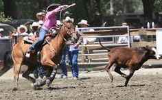 Rodeo Under Fire, Facing Lawsuit for Underreporting Animal Injuries
