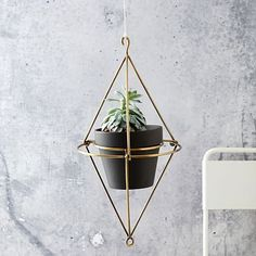 Hanging Wire Pot Bracket - Plated Brass #westelm